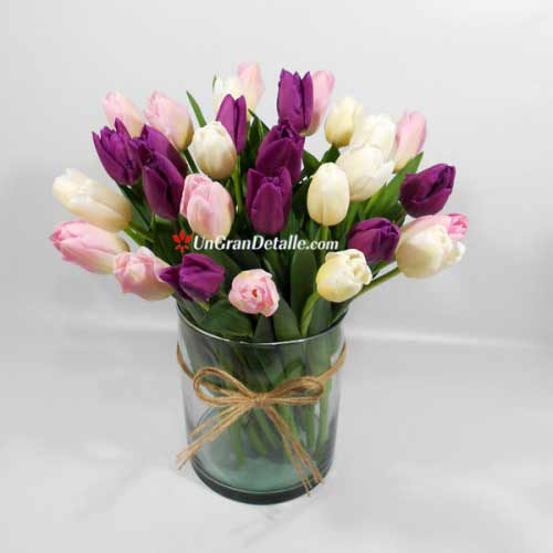 Tulipanes purple